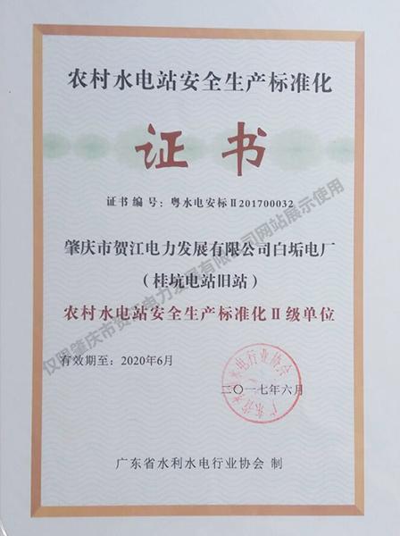 桂坑中电站安全生产标准二级证书
