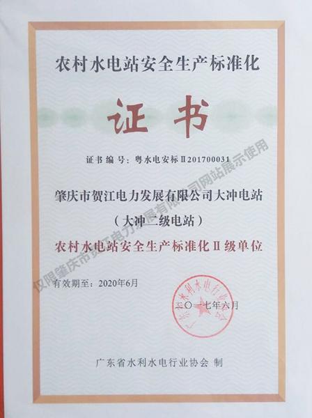 大冲二站安全生产标准二级证书